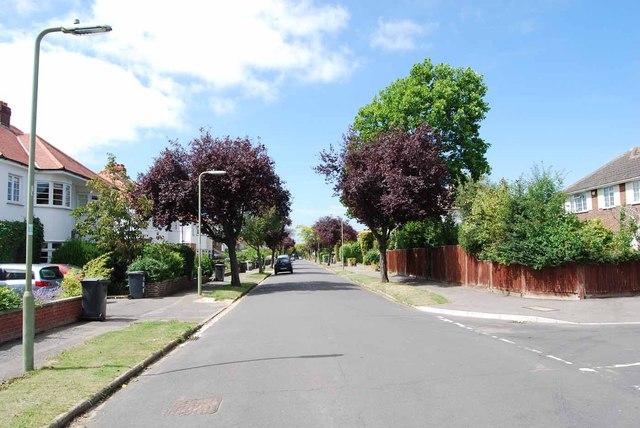 Vectis Road (4)