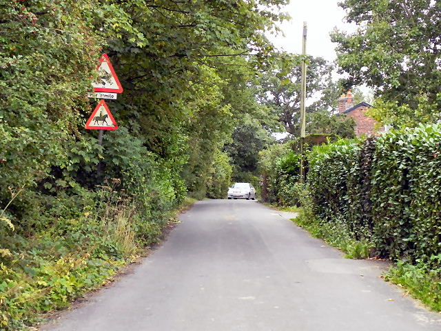 Blossoms Lane, Woodford