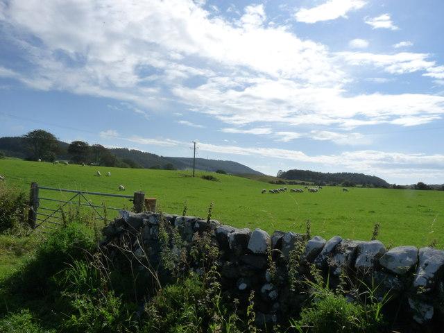 Craigcaffie Farmland