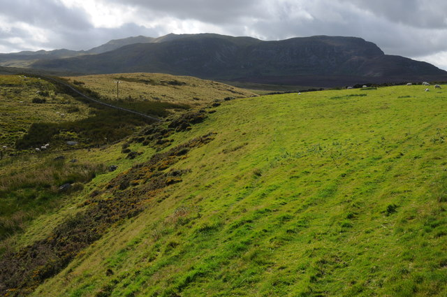 View to Arenig Fawr