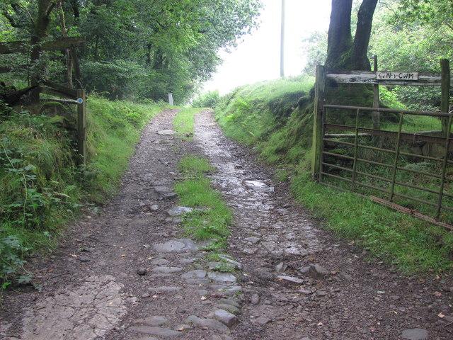 Driveway leading towards Ty'n-y-Cwm