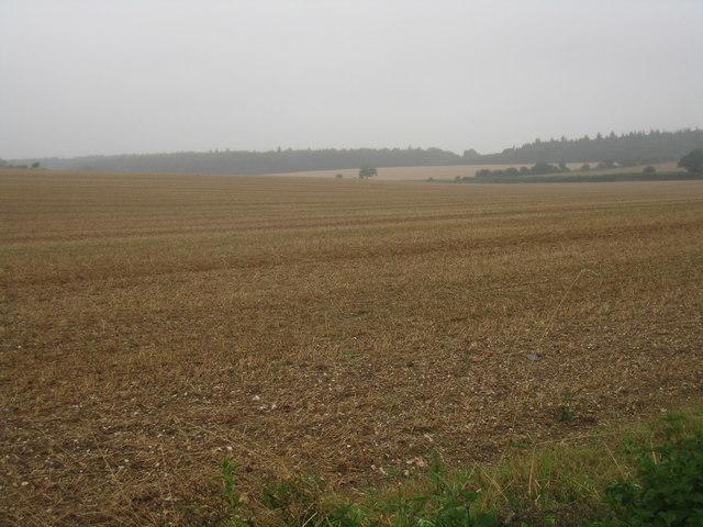 Farmland near Round Wood
