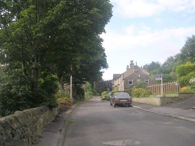 Park Lane - viewed from Centenary Road