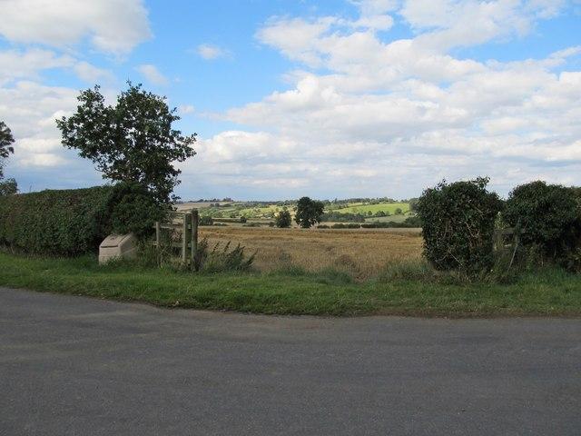 Holdenby Farmland
