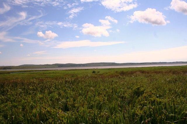 Wetland by Bridgend