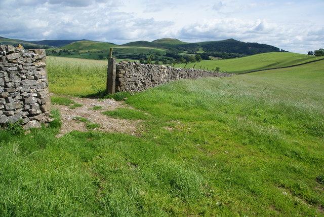 Fields and walls near Mickleber Hill