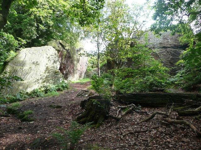 Rocks in Wilson's Wood, Otley