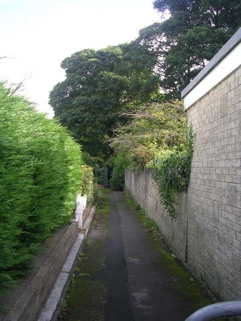 Footpath - Langley Lane