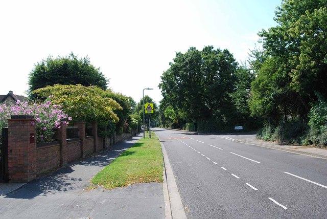 The Avenue (2)