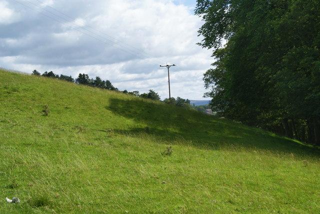 Hillside above Friars Head