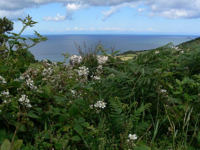 Coastal view at Red Wharf Bay