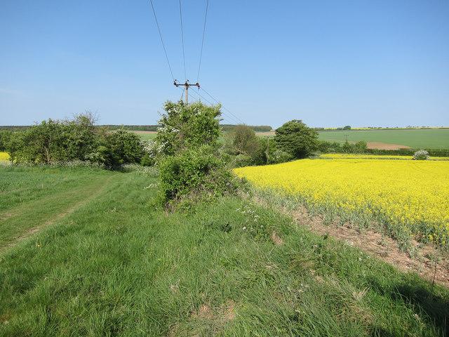 Farmland by the Roman Road