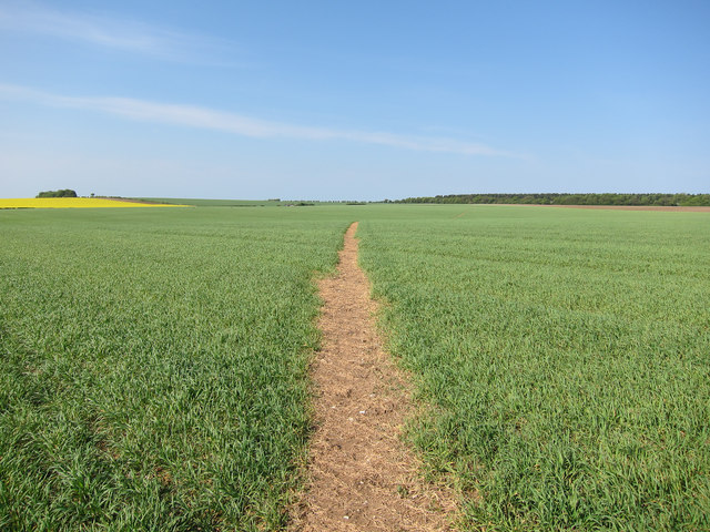 Bridleway across the fields