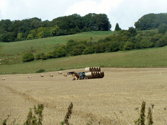 A load of straw bales