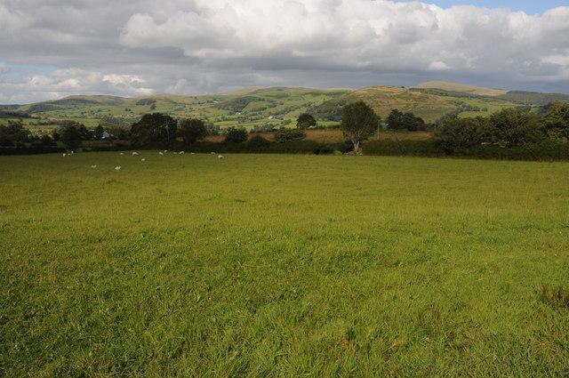 Farmland near Ty-gwyn