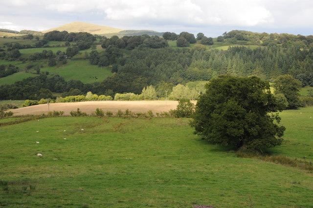 Tryweryn valley