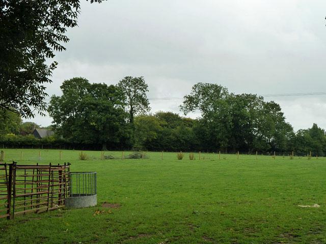 Field east of Stoneings Lane