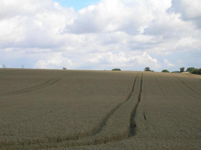 Farmland near Upper Whiston
