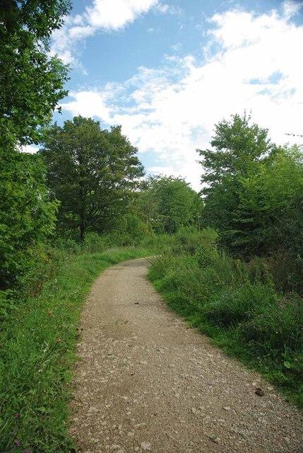 Dog Dirt Path, Broaks Wood
