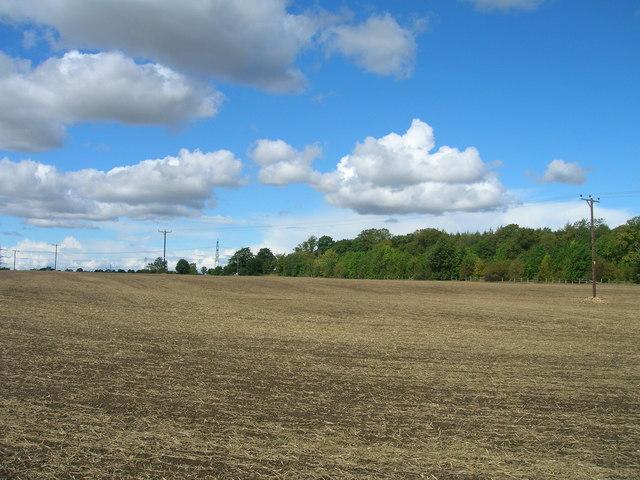 Farmland off Gypsy Lane