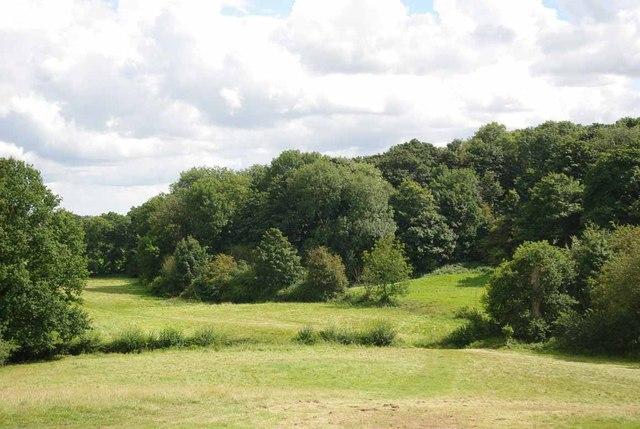 Footpath & Great Spansey Wood
