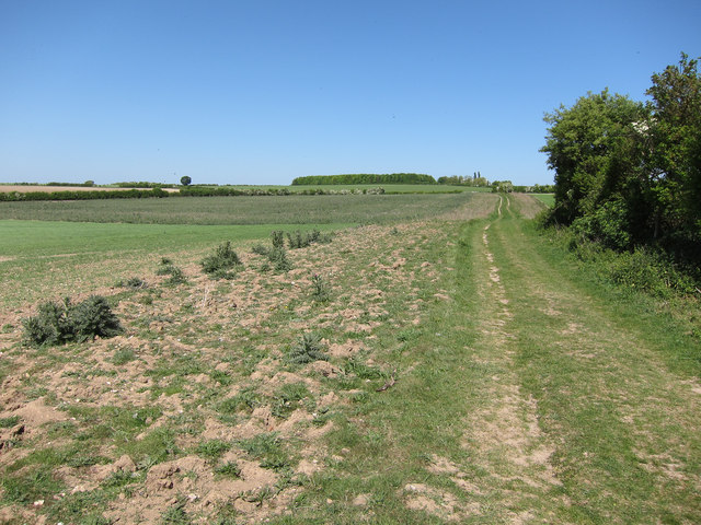 Bridleway to the Roman Road