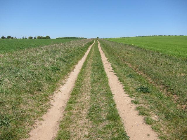 Bridleway to Roman Road