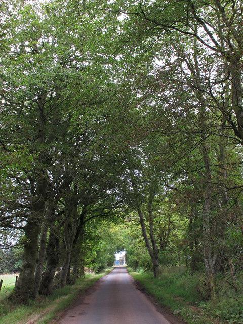 Minor Road near Westlinbank