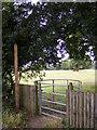 TM2250 : Footpath to Park Farm by Geographer