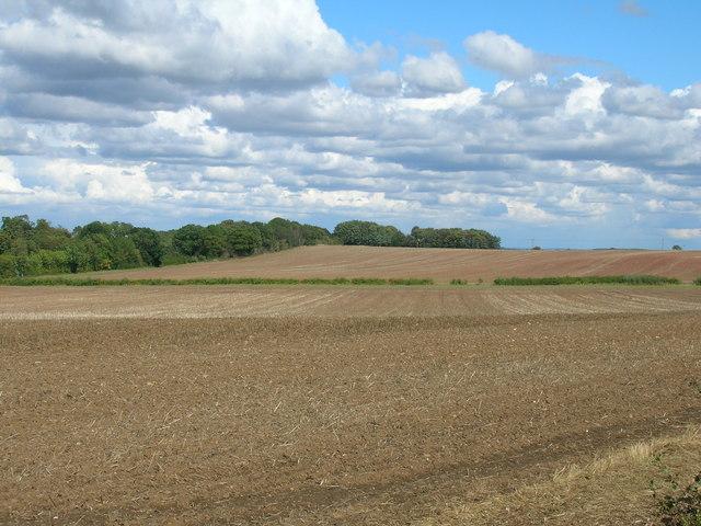 Farmland off Sandbeck Lane