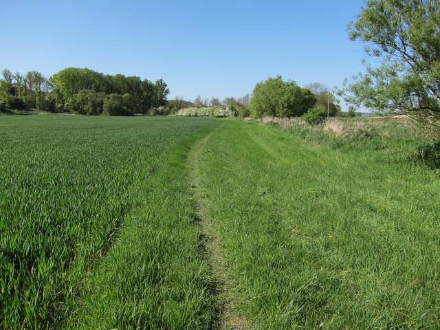 Footpath along River Bourn