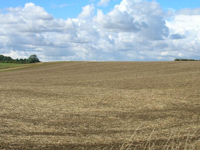 Farmland off Cockhill Lane