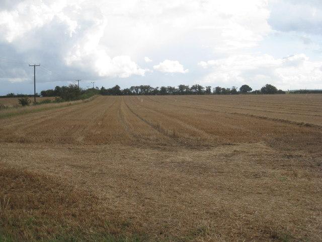 View near South Killingholme