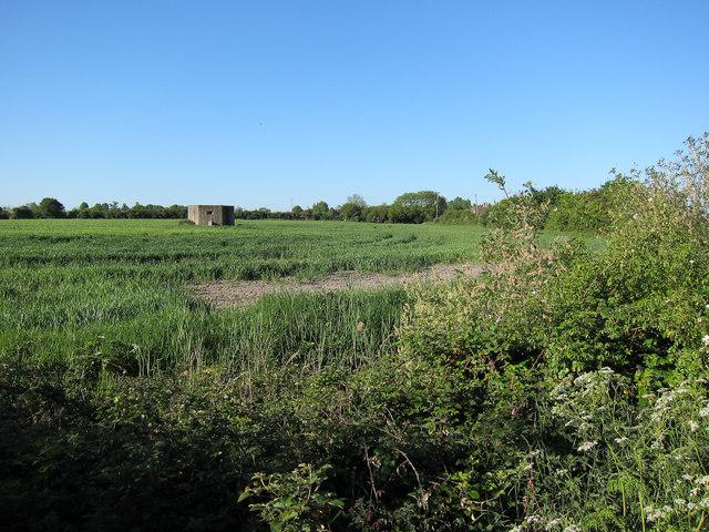 Pillbox north of Wicken