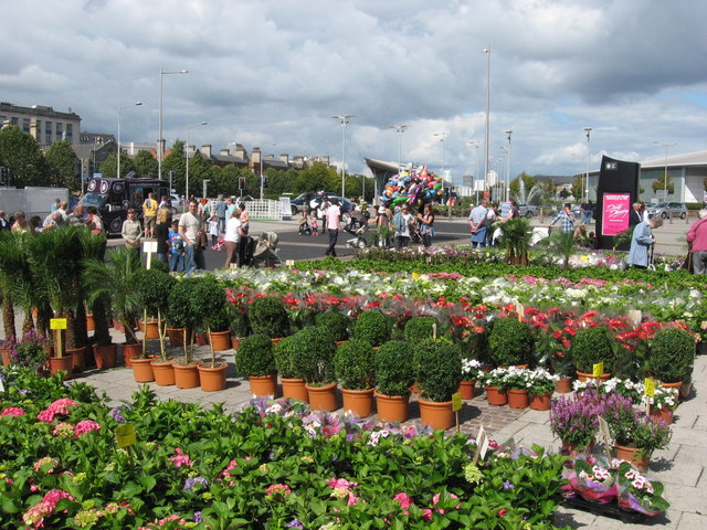 Dutch flower stall at Cardiff Harbour Festival