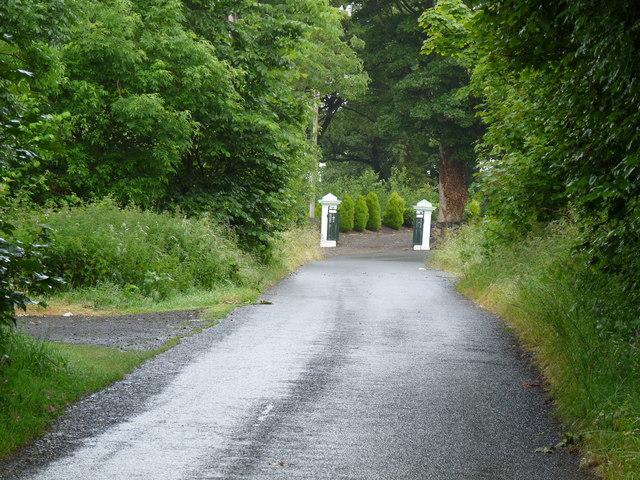 Road at Craigcaffie