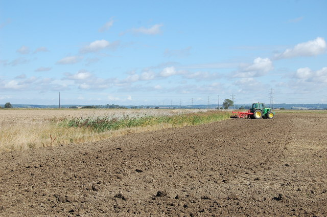 Tractor on Romney Marsh