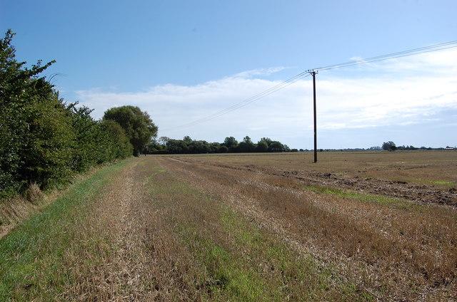 Fields near Tonbridge Farm