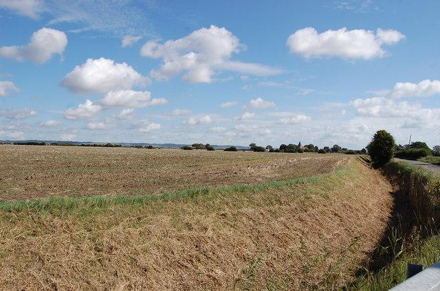 Farmland near St Mary in the  Marsh