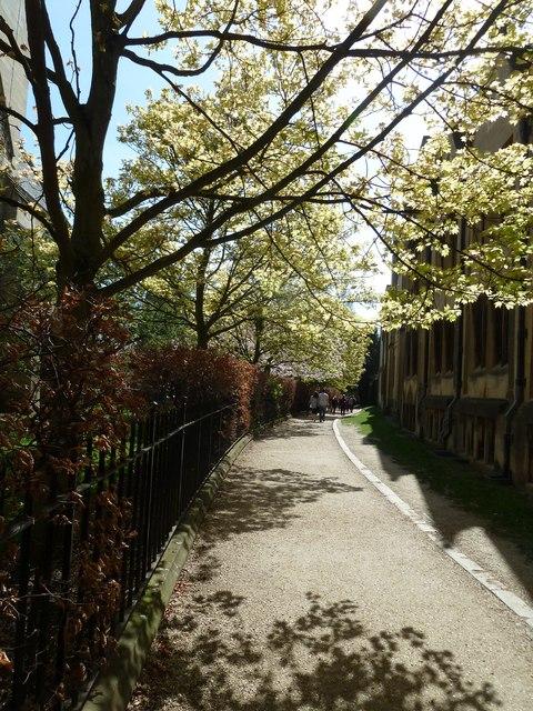 Path from Merton Street to Christ Church