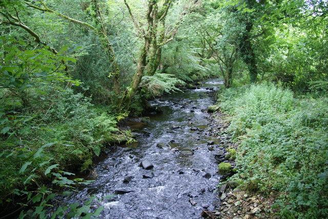 Afon Gwaun
