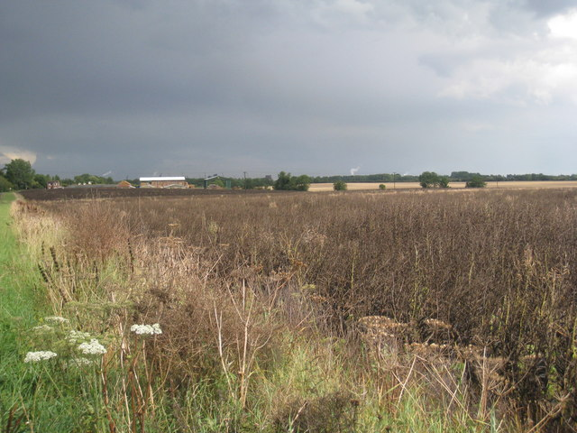 Storm brewing over South Killingholme