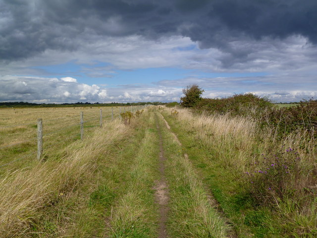 Pennington, Iley Lane