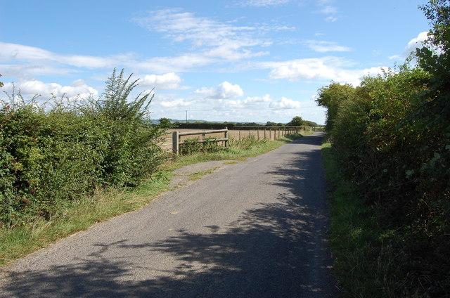 Pickneybush Lane