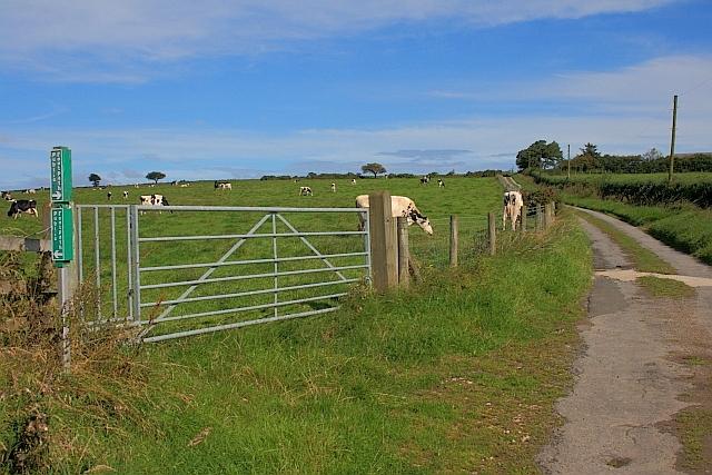 Field near Moor Cottage Farm