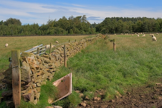 Wall off Moor End Road