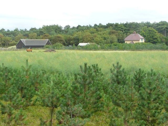 Sandfield Farm, Formby