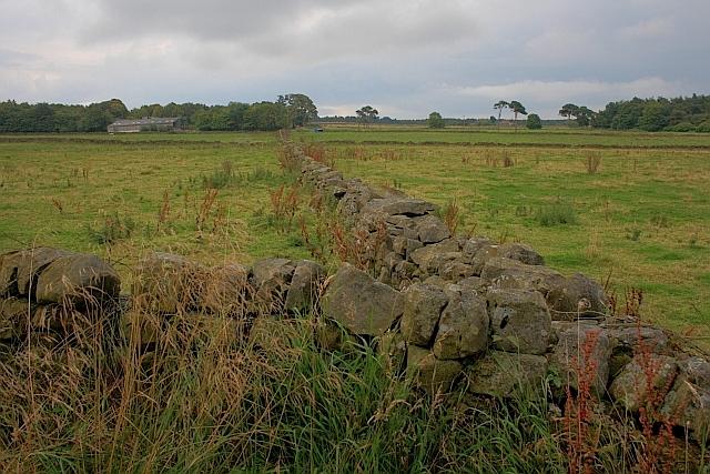 Wall Junction near Linglands Farm