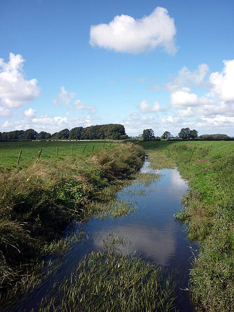 The River Cocker at Little Crimbles
