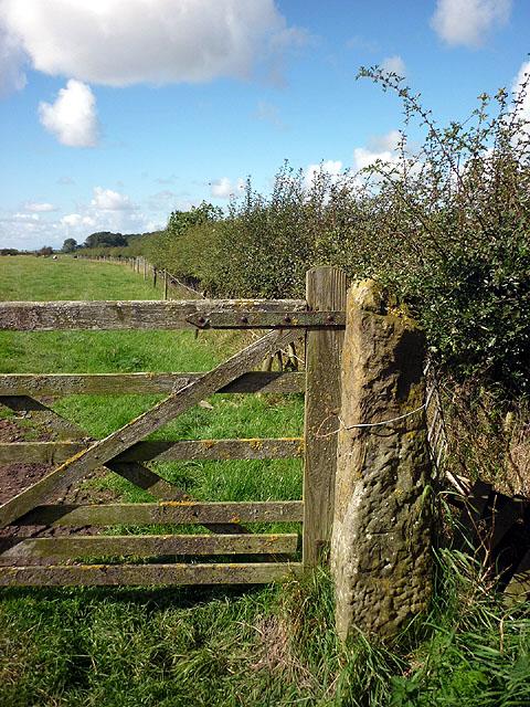 Bench mark on gatepost near Weasel Wood